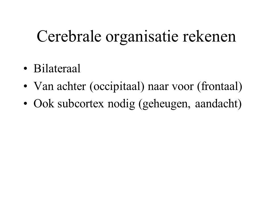 Cerebrale organisatie rekenen