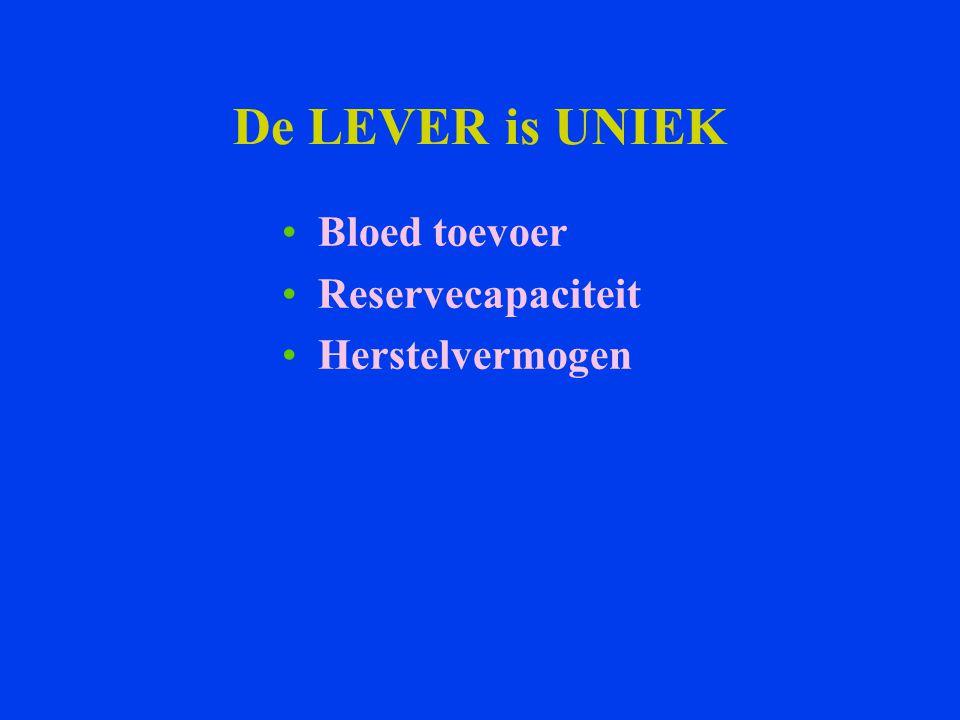 De LEVER is UNIEK Bloed toevoer Reservecapaciteit Herstelvermogen