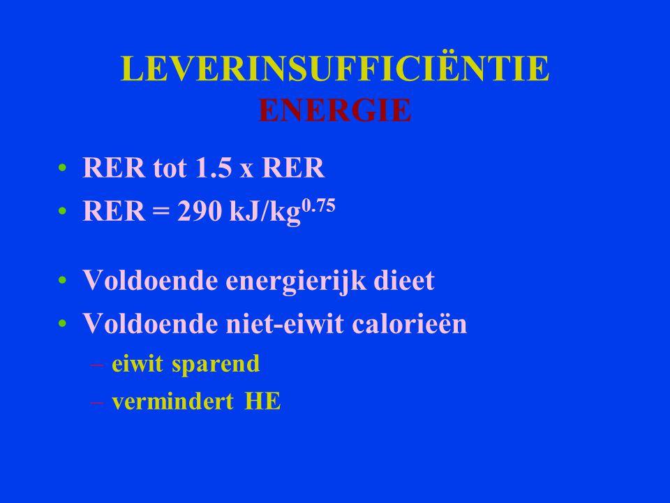 LEVERINSUFFICIËNTIE ENERGIE