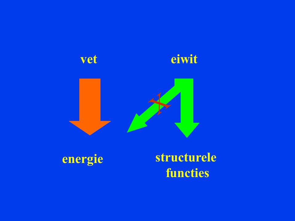 vet eiwit X energie structurele functies