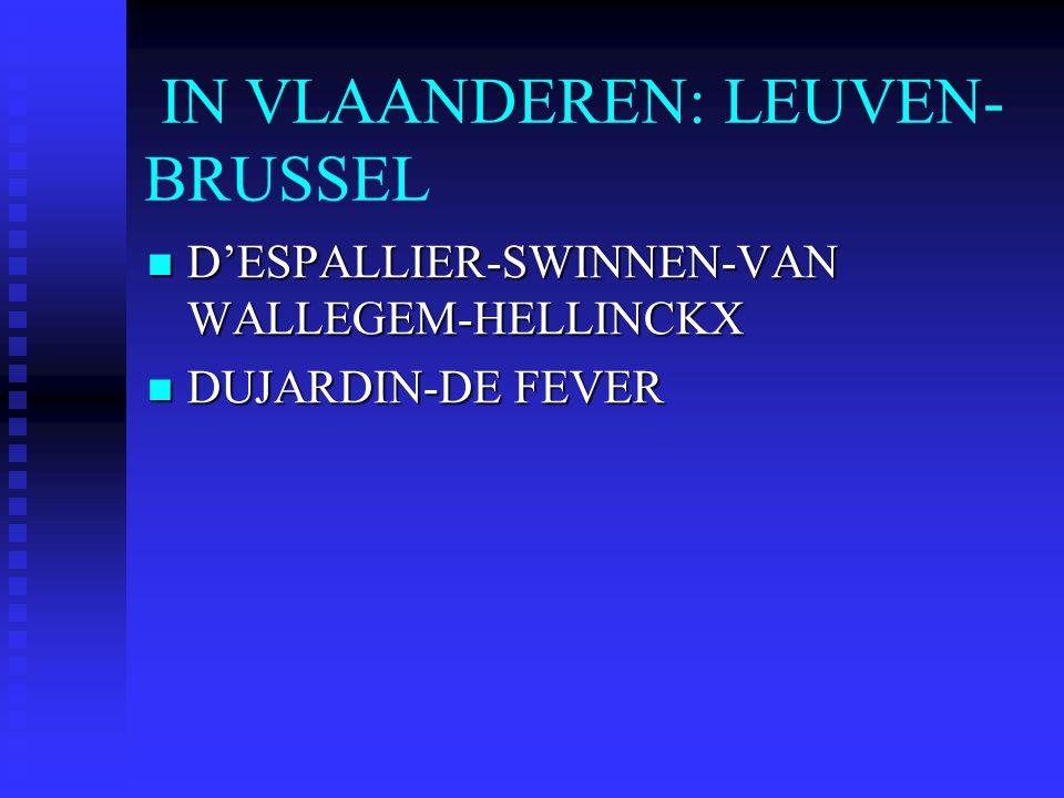 IN VLAANDEREN: LEUVEN-BRUSSEL