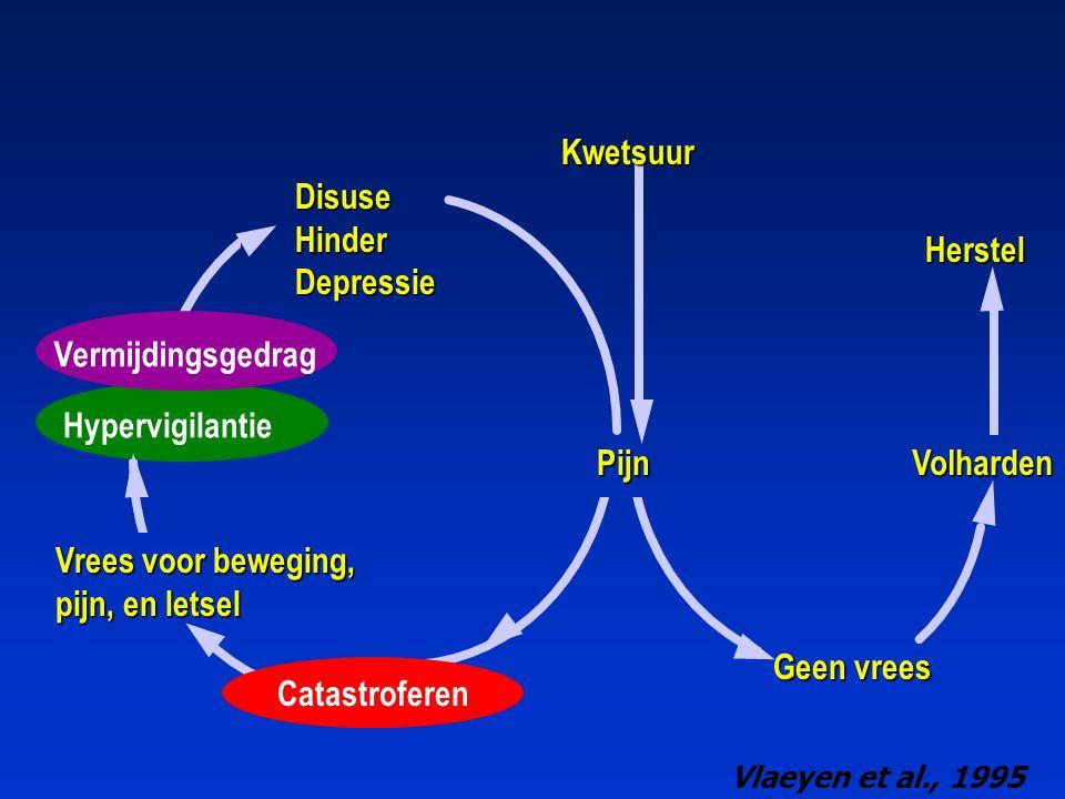 Kwetsuur Disuse Hinder Depressie Herstel Vermijdingsgedrag