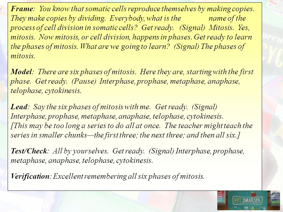 Frame: You know that somatic cells reproduce themselves by making copies. They make copies by dividing. Everybody, what is the name of the process of cell division in somatic cells Get ready. (Signal) Mitosis. Yes, mitosis. Now mitosis, or cell division, happens in phases. Get ready to learn the phases of mitosis. What are we going to learn (Signal) The phases of mitosis.