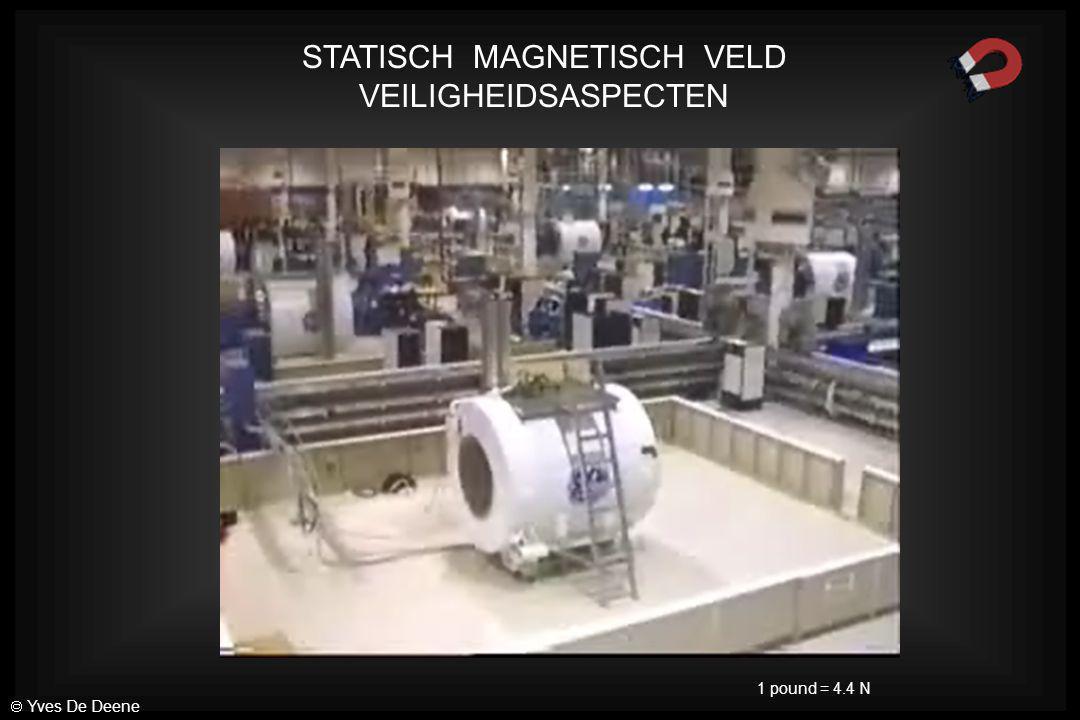 STATISCH MAGNETISCH VELD