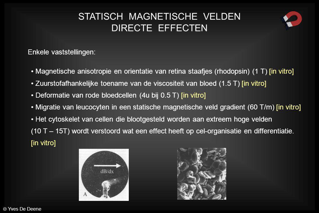 STATISCH MAGNETISCHE VELDEN