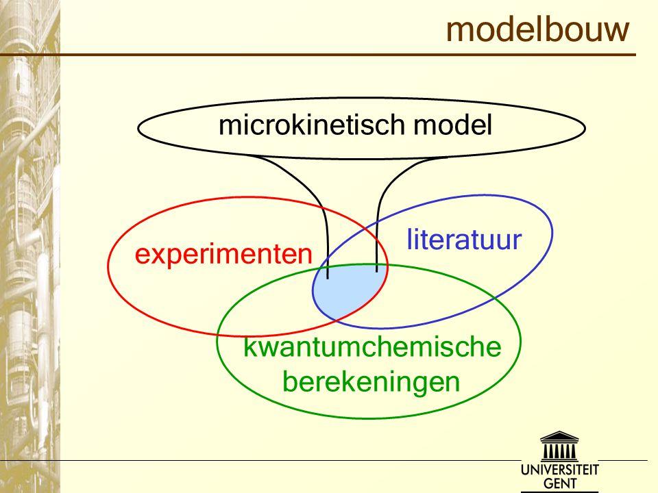 modelbouw microkinetisch model literatuur experimenten