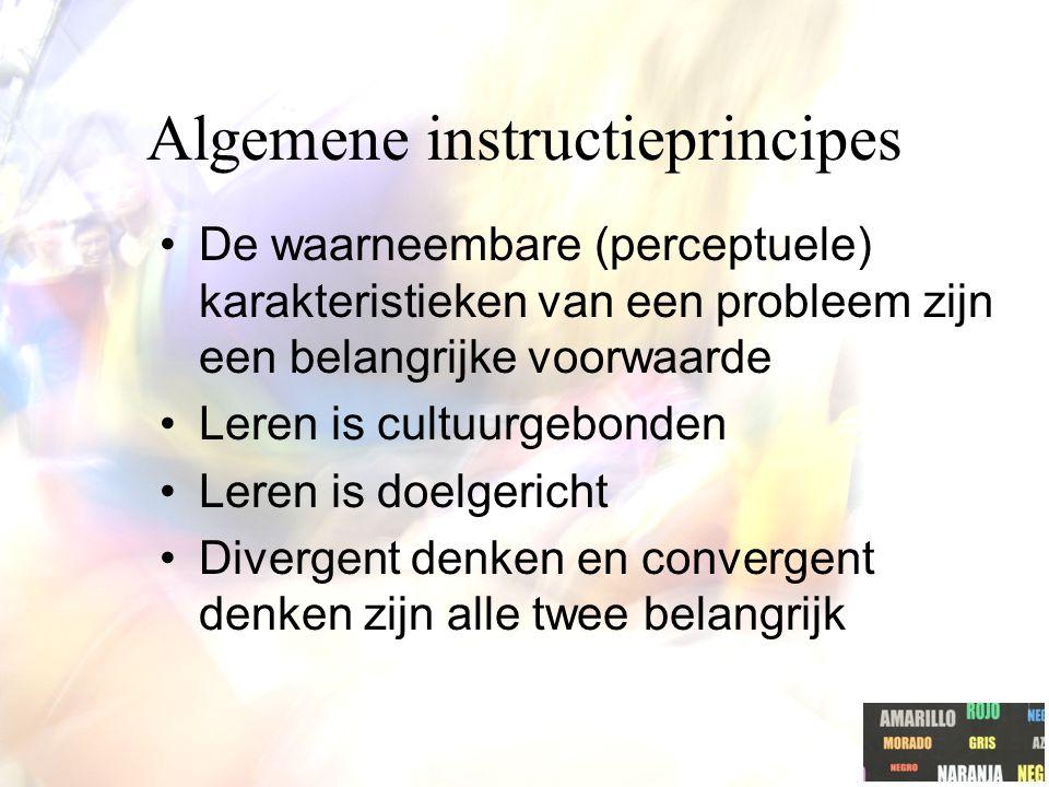 Algemene instructieprincipes