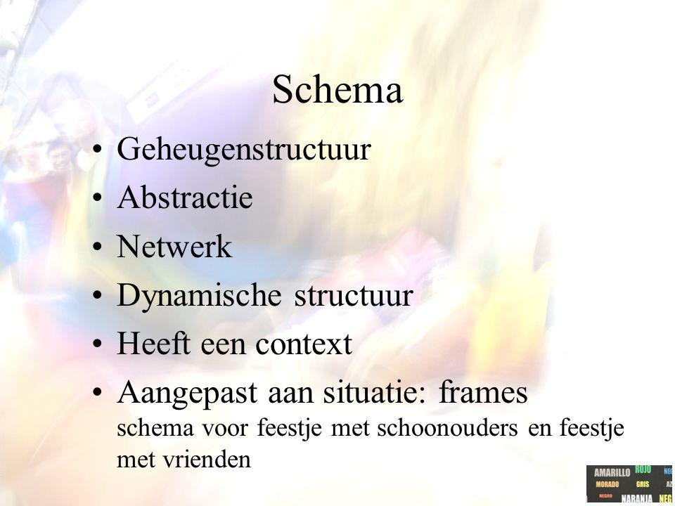 Schema Geheugenstructuur Abstractie Netwerk Dynamische structuur
