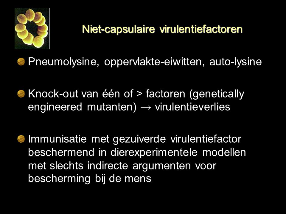 Niet-capsulaire virulentiefactoren