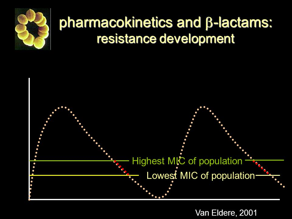 pharmacokinetics and b-lactams: resistance development