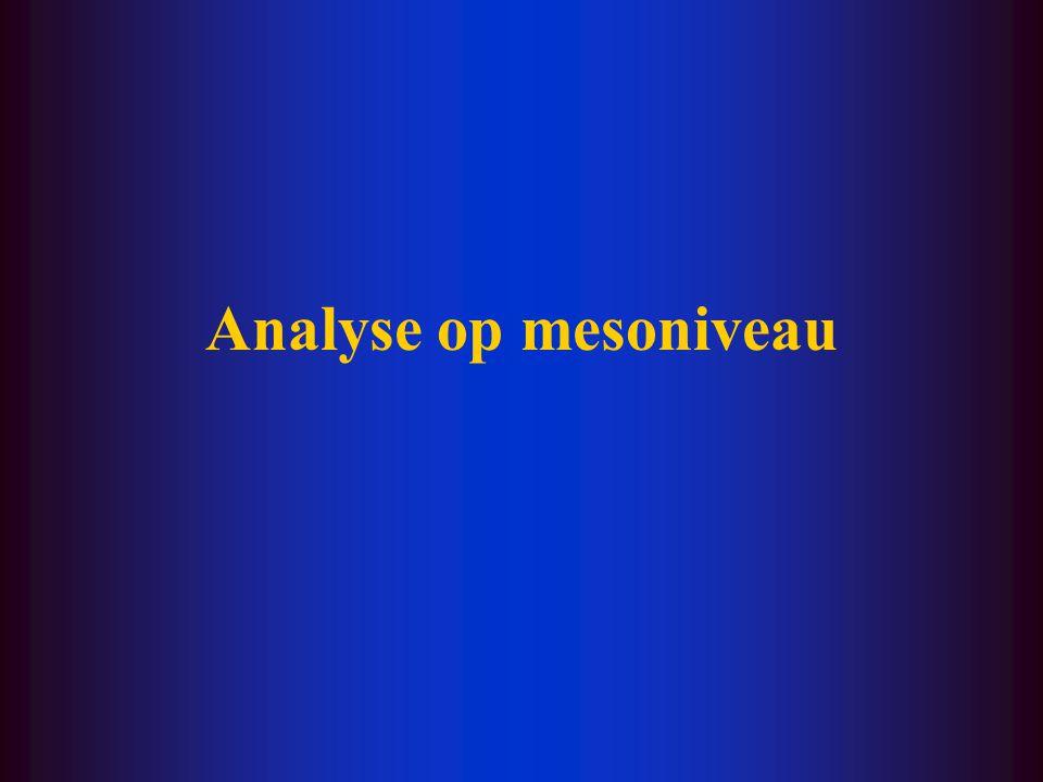 Analyse op mesoniveau