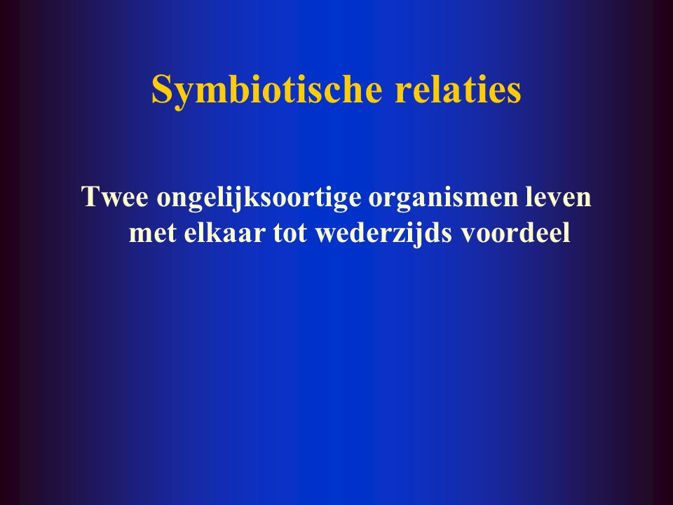 Symbiotische relaties