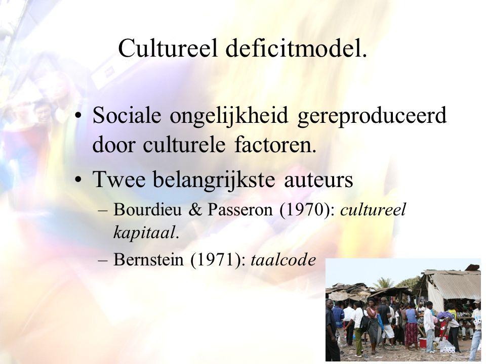 Cultureel deficitmodel.