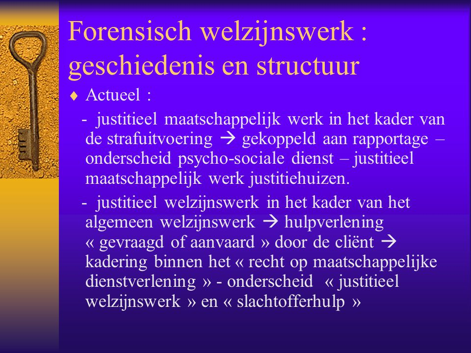 Forensisch welzijnswerk : geschiedenis en structuur