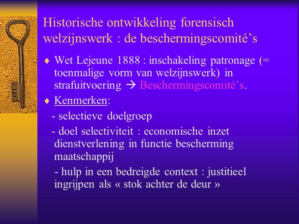 Historische ontwikkeling forensisch welzijnswerk : de beschermingscomité's