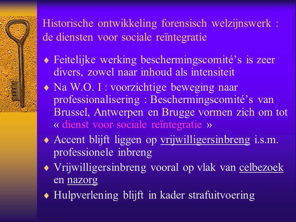 Historische ontwikkeling forensisch welzijnswerk : de diensten voor sociale reïntegratie