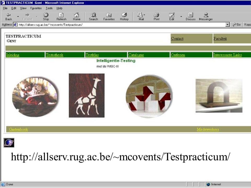 Website Testpracticum