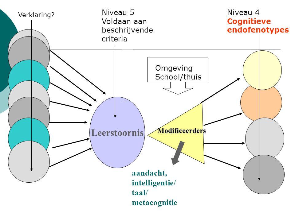Leerstoornis aandacht, intelligentie/ taal/ metacognitie Niveau 5