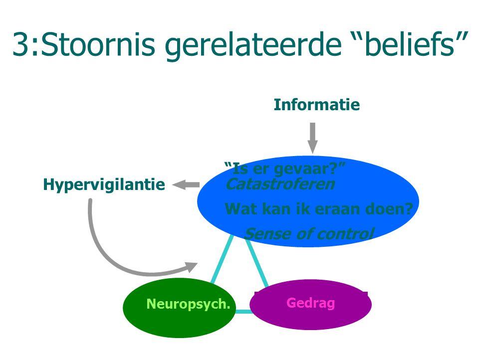 3:Stoornis gerelateerde beliefs