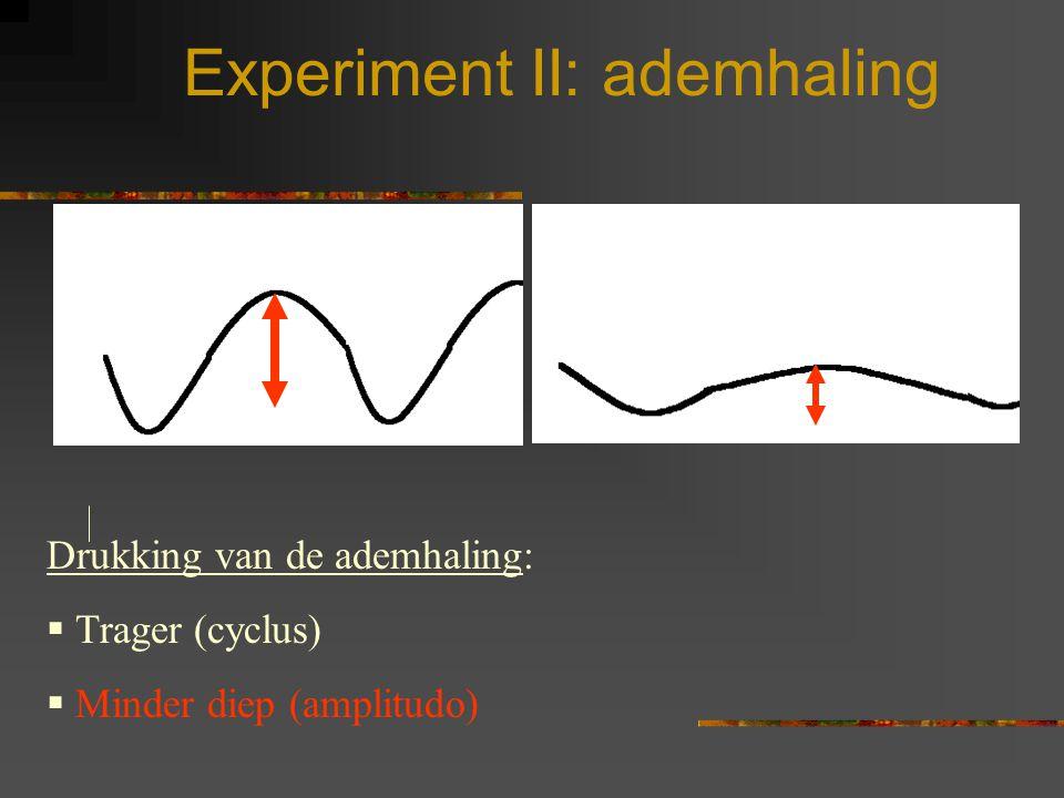 Experiment II: ademhaling
