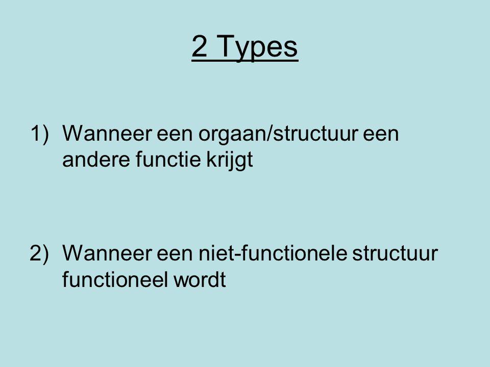 2 Types Wanneer een orgaan/structuur een andere functie krijgt