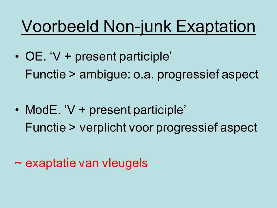 Voorbeeld Non-junk Exaptation