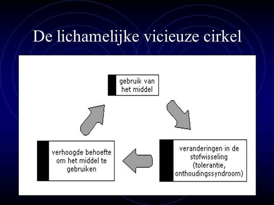 De lichamelijke vicieuze cirkel