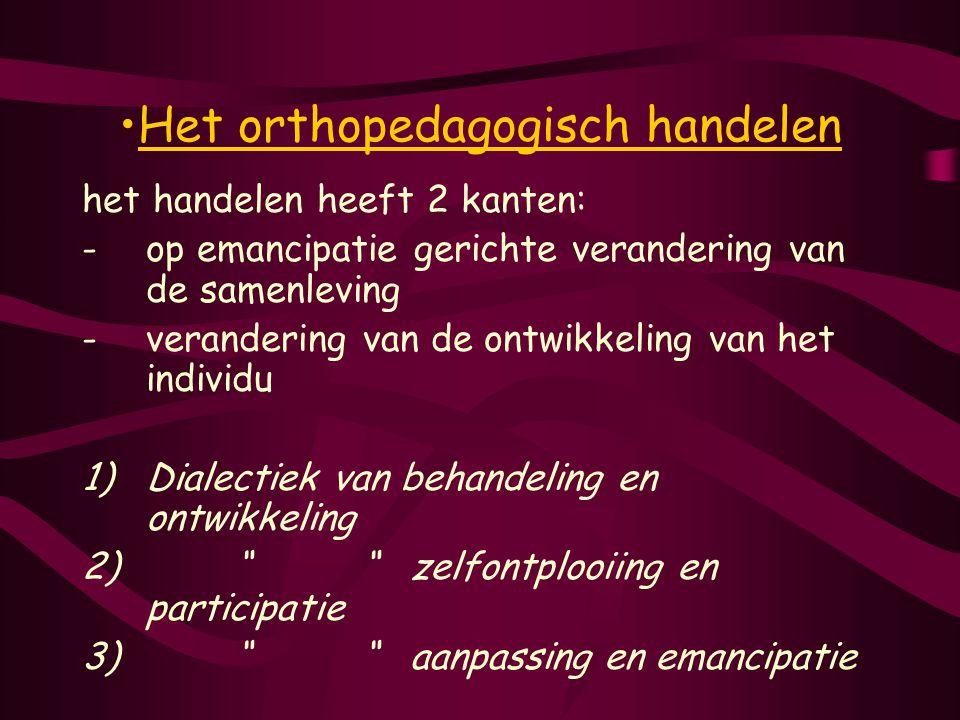 Het orthopedagogisch handelen