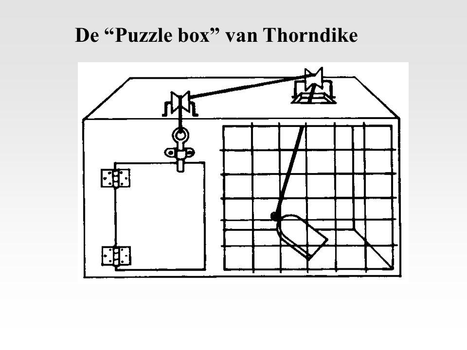 De Puzzle box van Thorndike