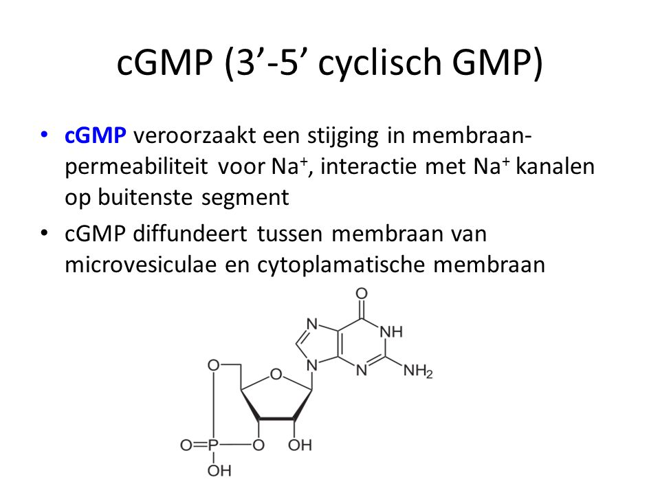 cGMP (3'-5' cyclisch GMP)