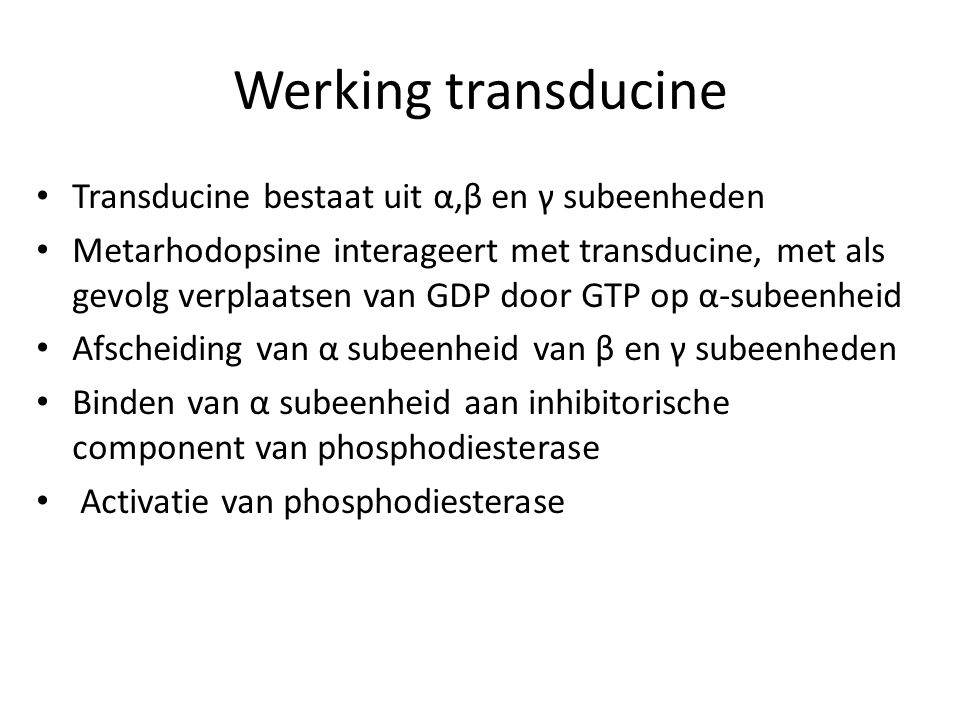 Werking transducine Transducine bestaat uit α,β en γ subeenheden