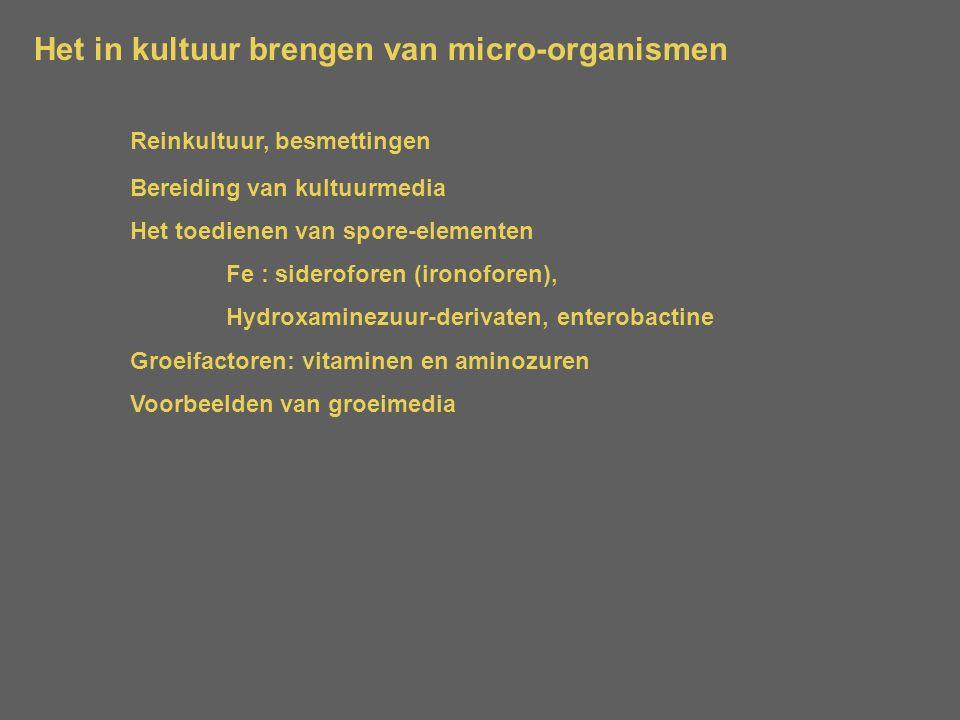 Het in kultuur brengen van micro-organismen Reinkultuur, besmettingen