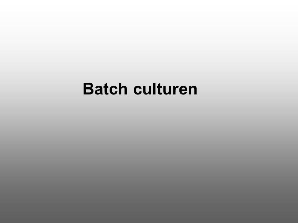 Batch culturen