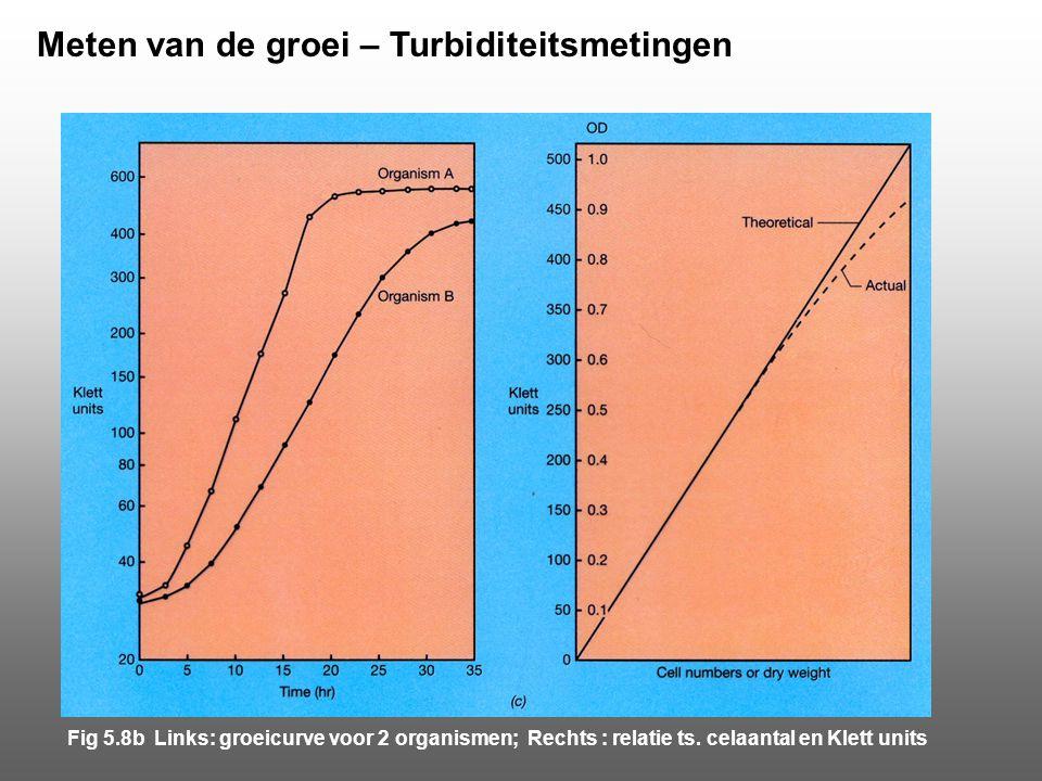 Meten van de groei – Turbiditeitsmetingen