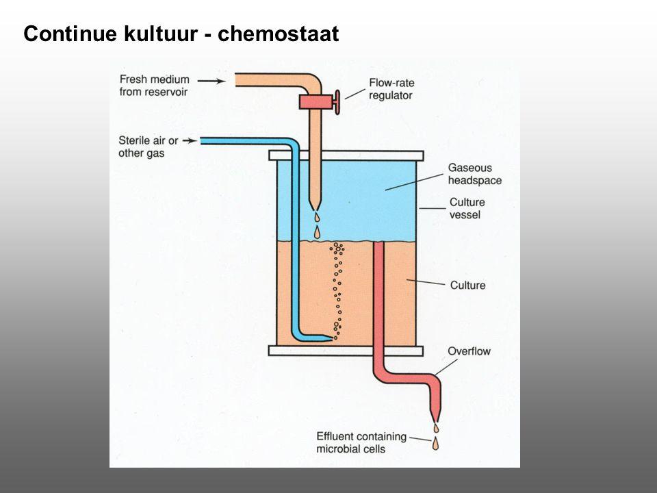 Continue kultuur - chemostaat