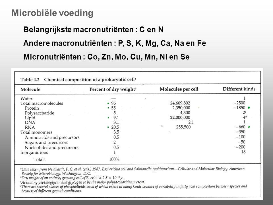 Microbiële voeding Belangrijkste macronutriënten : C en N