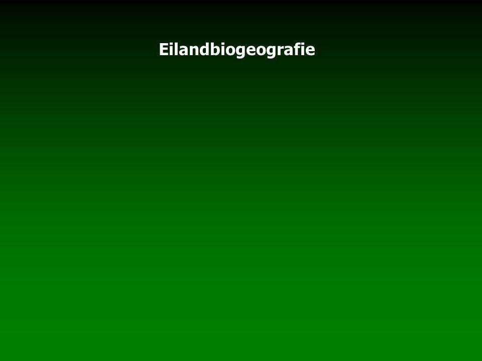 Eilandbiogeografie