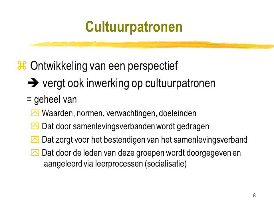 Cultuurpatronen Ontwikkeling van een perspectief