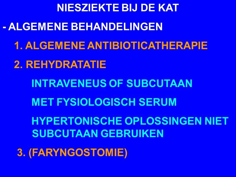 NIESZIEKTE BIJ DE KAT - ALGEMENE BEHANDELINGEN. 1. ALGEMENE ANTIBIOTICATHERAPIE. 2. REHYDRATATIE.