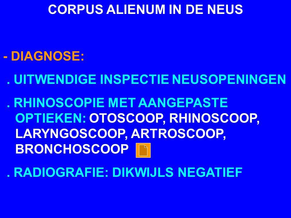CORPUS ALIENUM IN DE NEUS