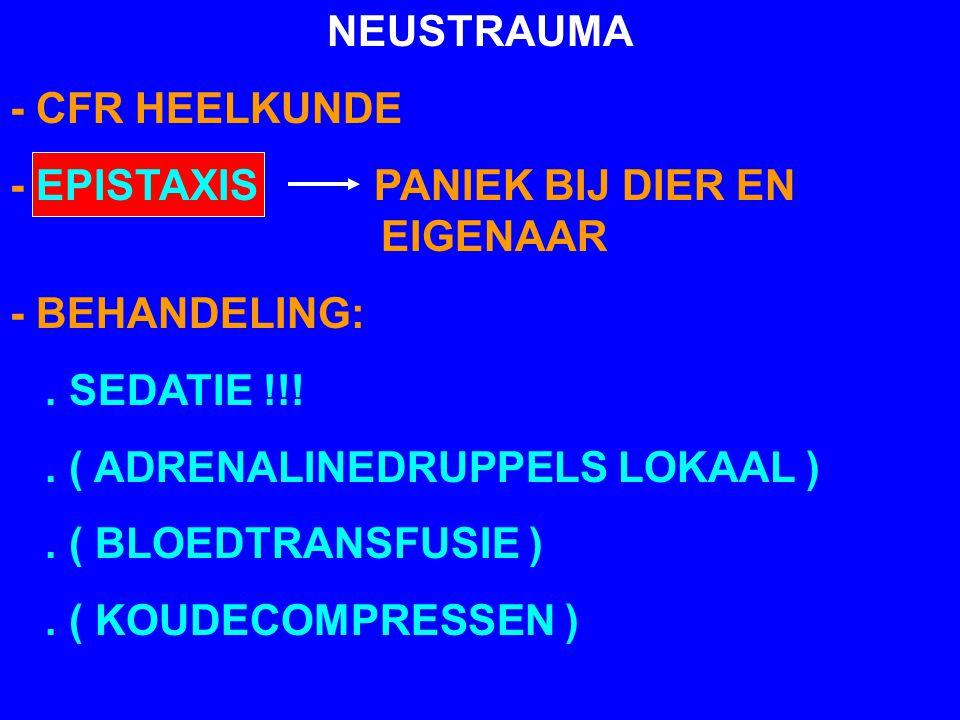 NEUSTRAUMA - CFR HEELKUNDE. - EPISTAXIS PANIEK BIJ DIER EN EIGENAAR. - BEHANDELING: