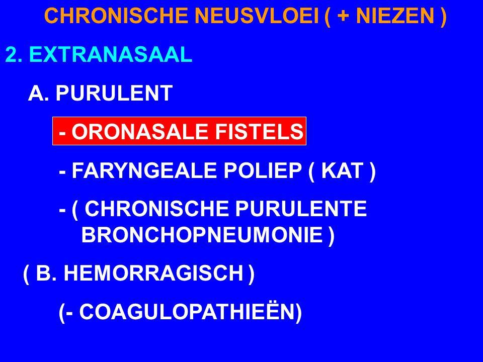 CHRONISCHE NEUSVLOEI ( + NIEZEN )