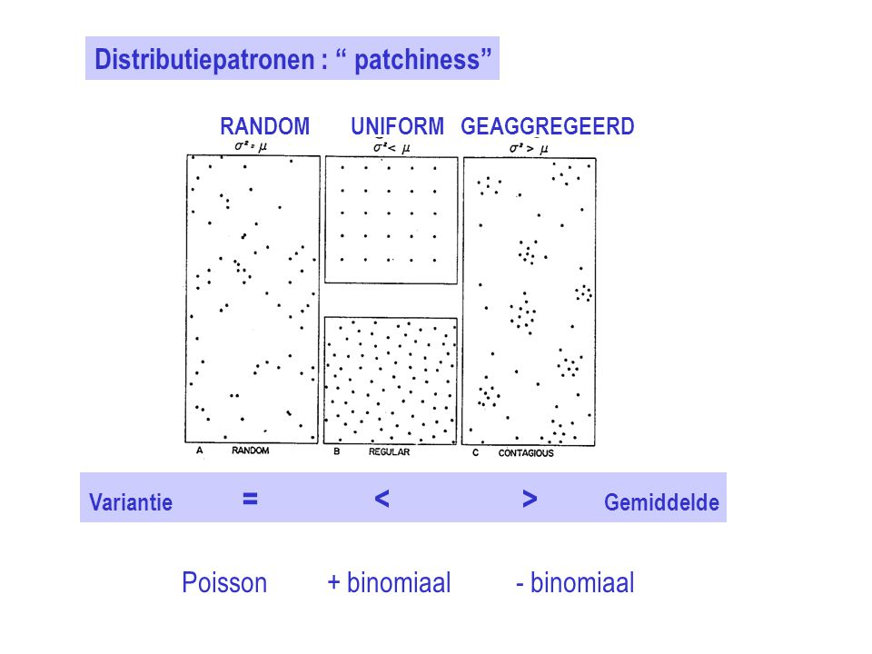 Distributiepatronen : patchiness