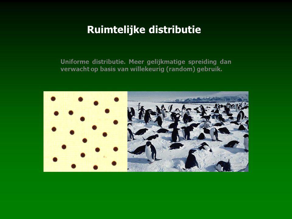 Ruimtelijke distributie
