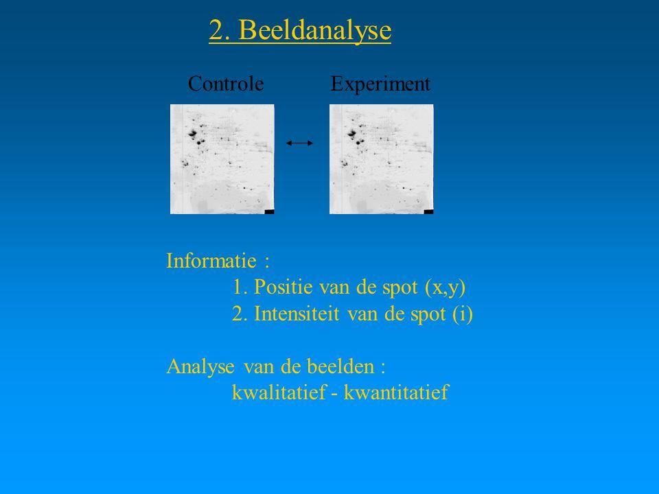 2. Beeldanalyse Controle Experiment Informatie :