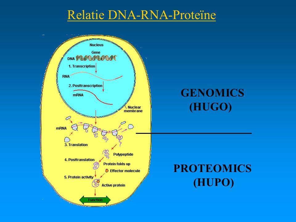 Relatie DNA-RNA-Proteïne
