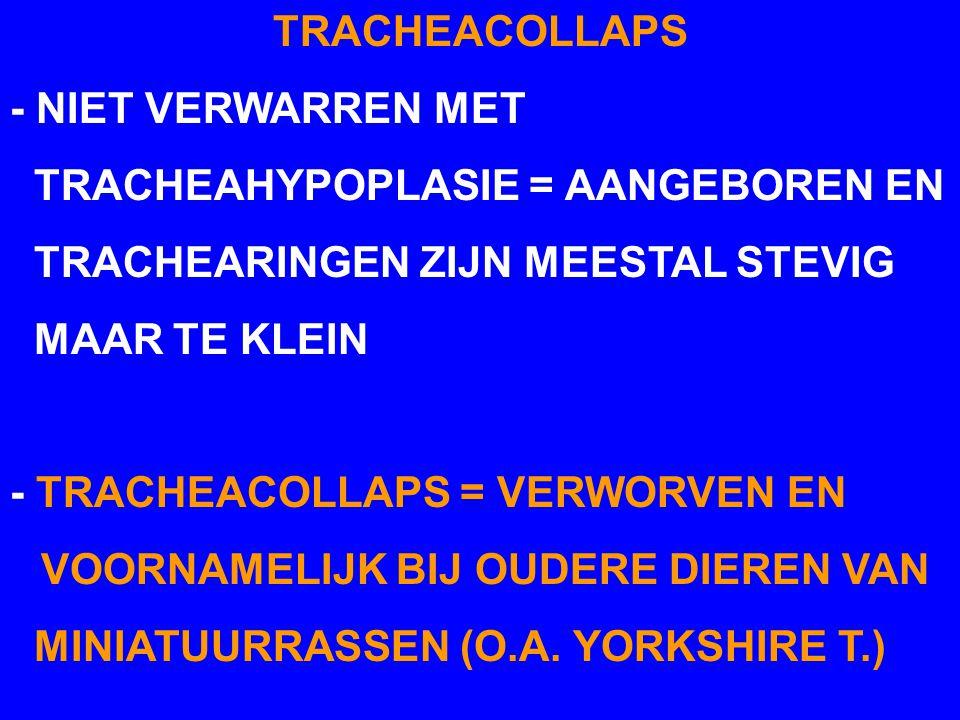 TRACHEACOLLAPS - NIET VERWARREN MET. TRACHEAHYPOPLASIE = AANGEBOREN EN. TRACHEARINGEN ZIJN MEESTAL STEVIG.