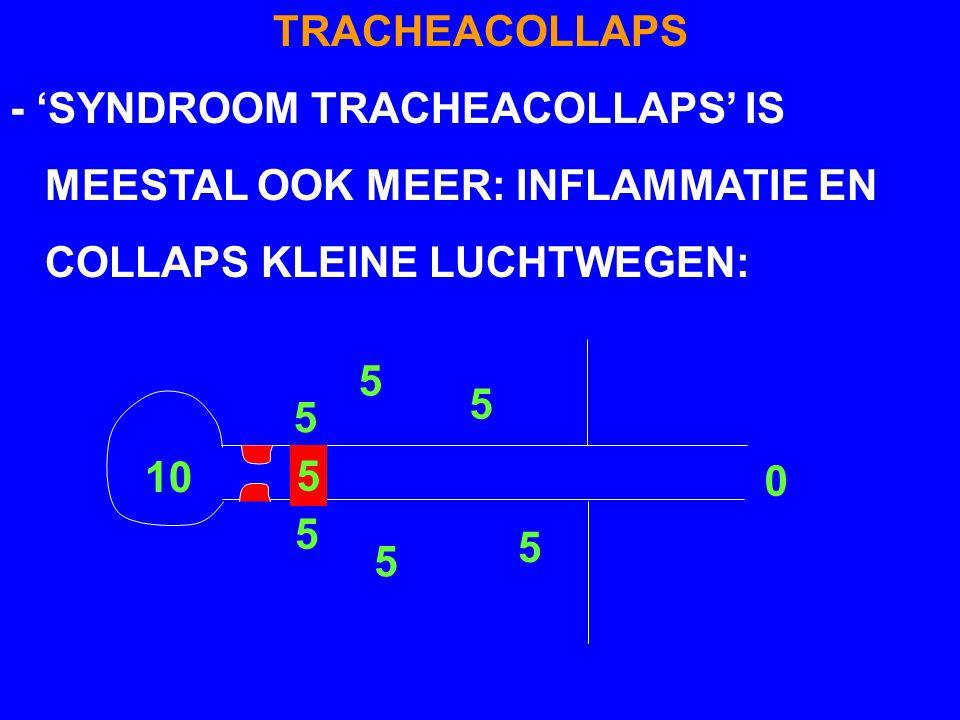 TRACHEACOLLAPS - 'SYNDROOM TRACHEACOLLAPS' IS. MEESTAL OOK MEER: INFLAMMATIE EN. COLLAPS KLEINE LUCHTWEGEN: