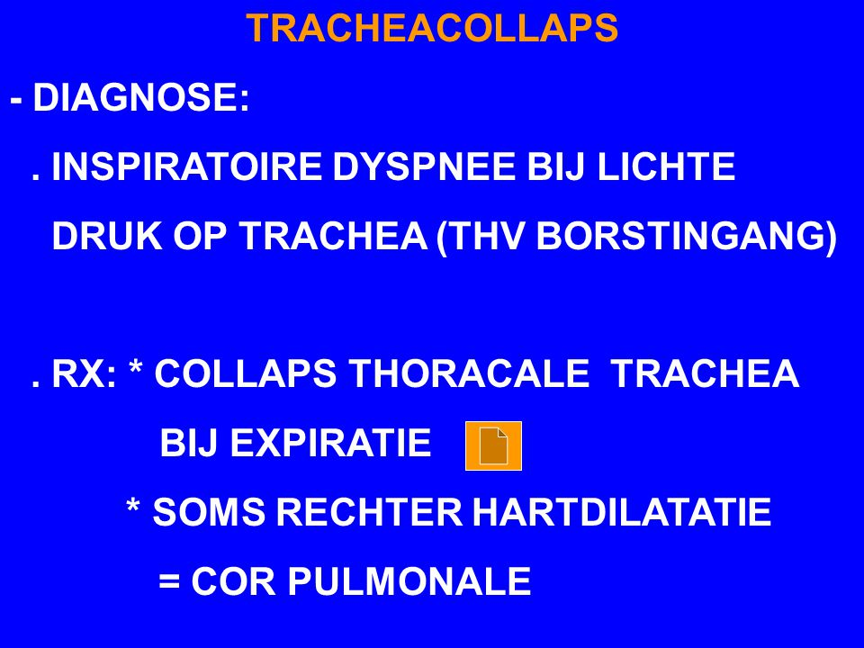 TRACHEACOLLAPS - DIAGNOSE: . INSPIRATOIRE DYSPNEE BIJ LICHTE. DRUK OP TRACHEA (THV BORSTINGANG) . RX: * COLLAPS THORACALE TRACHEA.