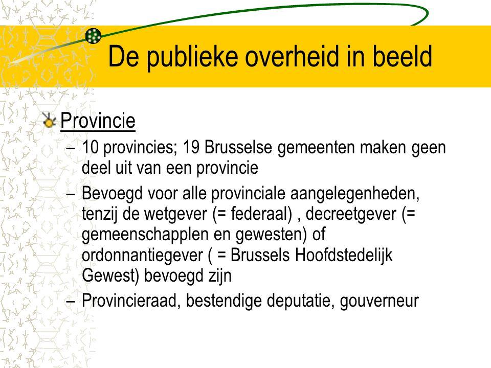 De publieke overheid in beeld